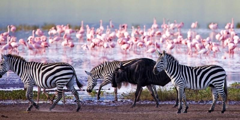 5 BEAUTIFUL PLACES TO VISIT IN KENYA
